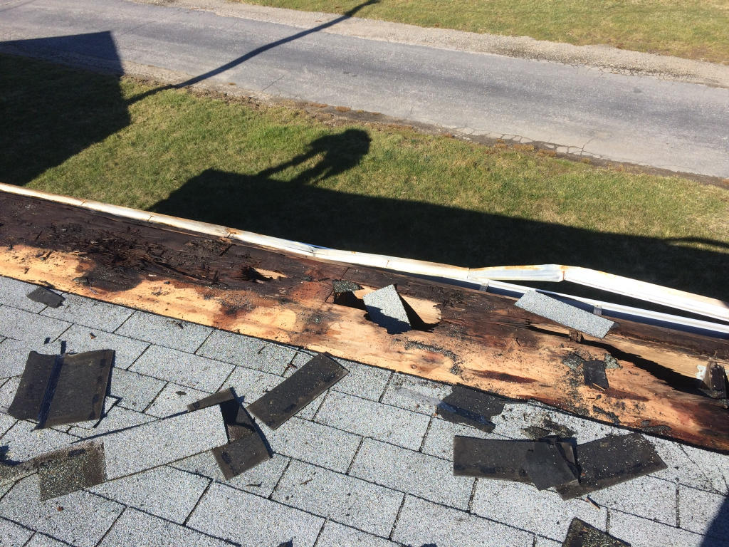 Proof of why you do not shingle a low slope roof and the start of the TPO install .... it was necessary to remove the botton 18 inches of the rotted plywood